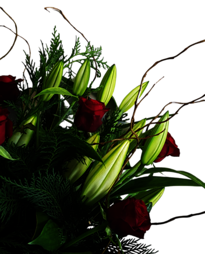 Christmas Flowers Auckland | Flower delivery Auckland