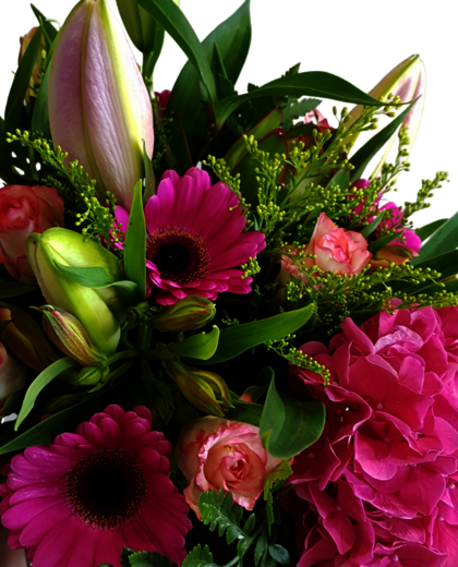 Posy Auckland | fresh flowers | flower delivery Auckland