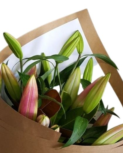 Pink Lilies - Pink Lilies Auckland | Flowers West Auckland |