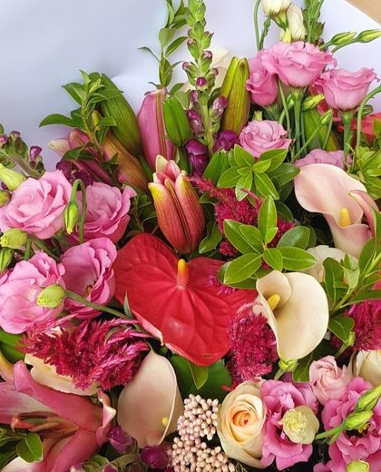 Designers Choice - Pink Flowers | Roses | Pink Lilies | Pink Flowers | Flowers Delivered Auckland